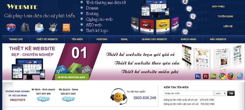 Thiết kế web Đại Trí Việt